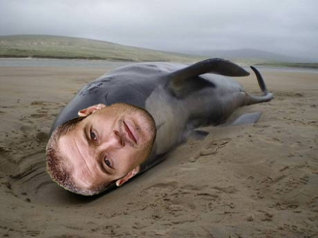 paul-robinson-blackburn-beached-whale