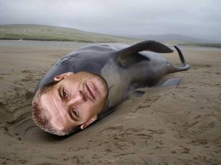 paul-robinson-blackburn-beached-whale